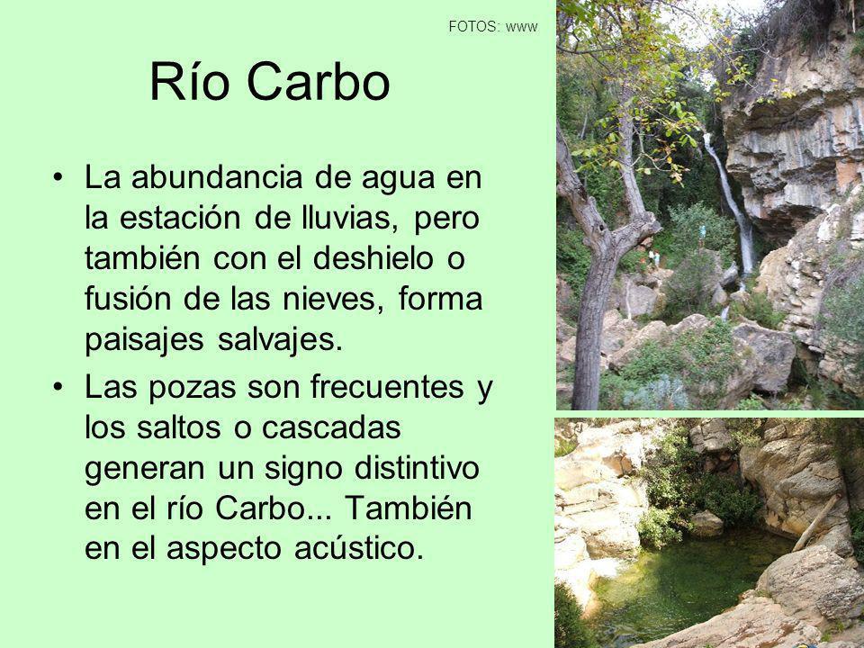 Río Carbo La abundancia de agua en la estación de lluvias, pero también con el deshielo o fusión de las nieves, forma paisajes salvajes. Las pozas son