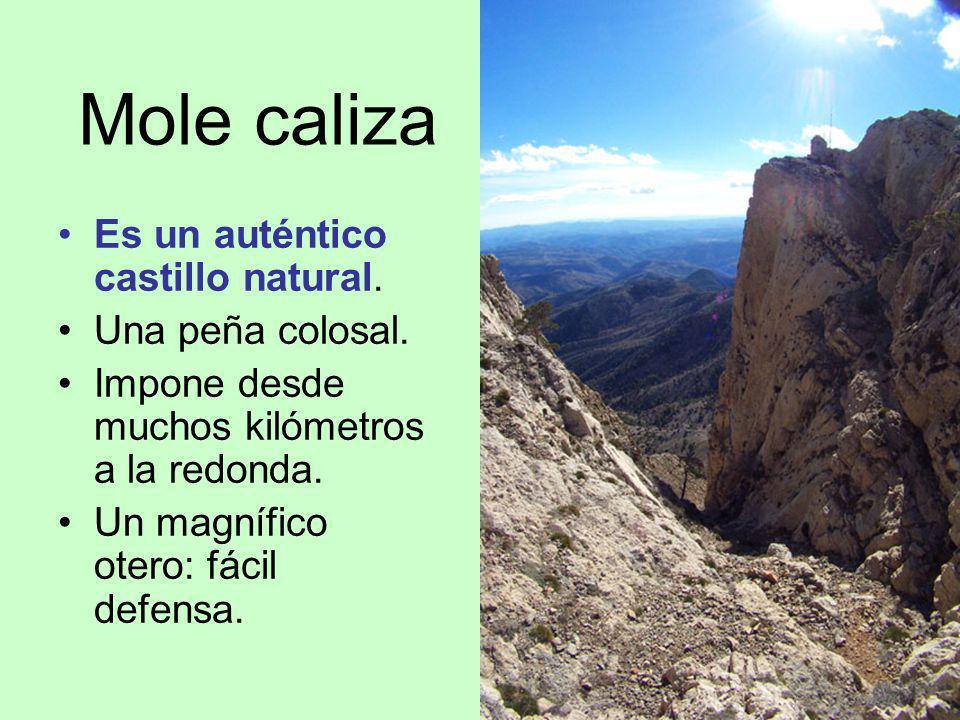 Mole caliza Es un auténtico castillo natural. Una peña colosal. Impone desde muchos kilómetros a la redonda. Un magnífico otero: fácil defensa.