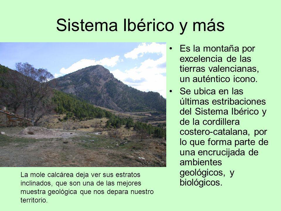 Sistema Ibérico y más Es la montaña por excelencia de las tierras valencianas, un auténtico icono. Se ubica en las últimas estribaciones del Sistema I