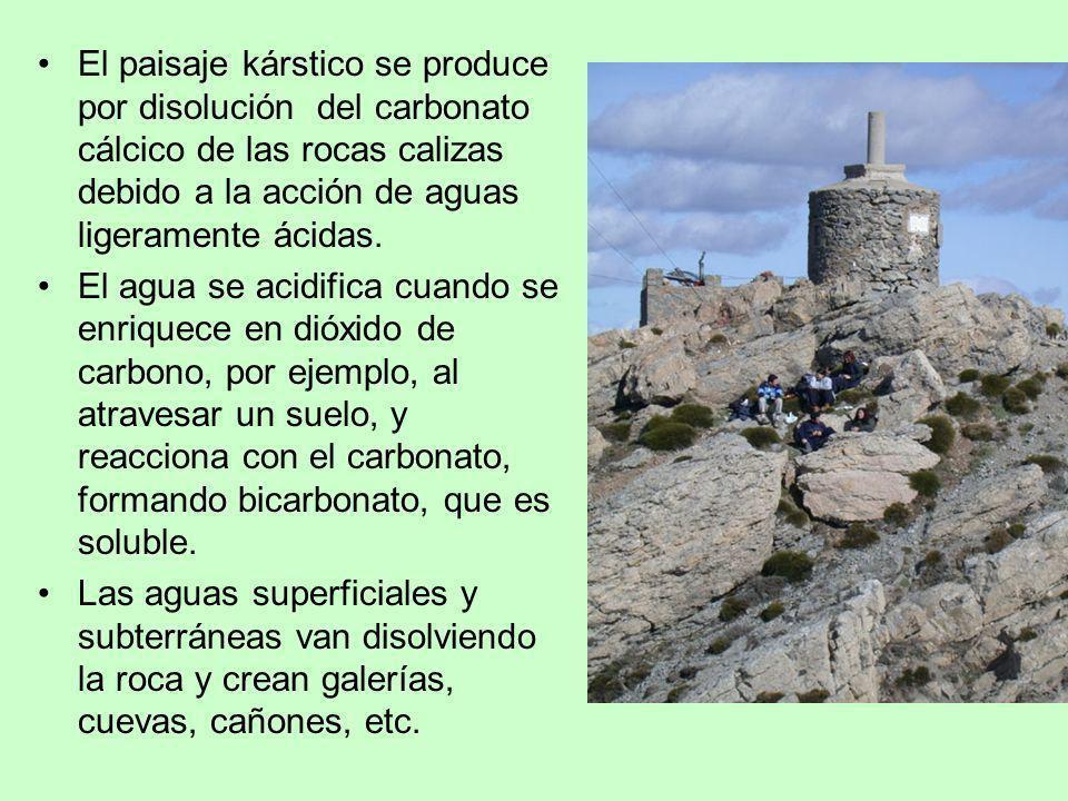 El paisaje kárstico se produce por disolución del carbonato cálcico de las rocas calizas debido a la acción de aguas ligeramente ácidas. El agua se ac
