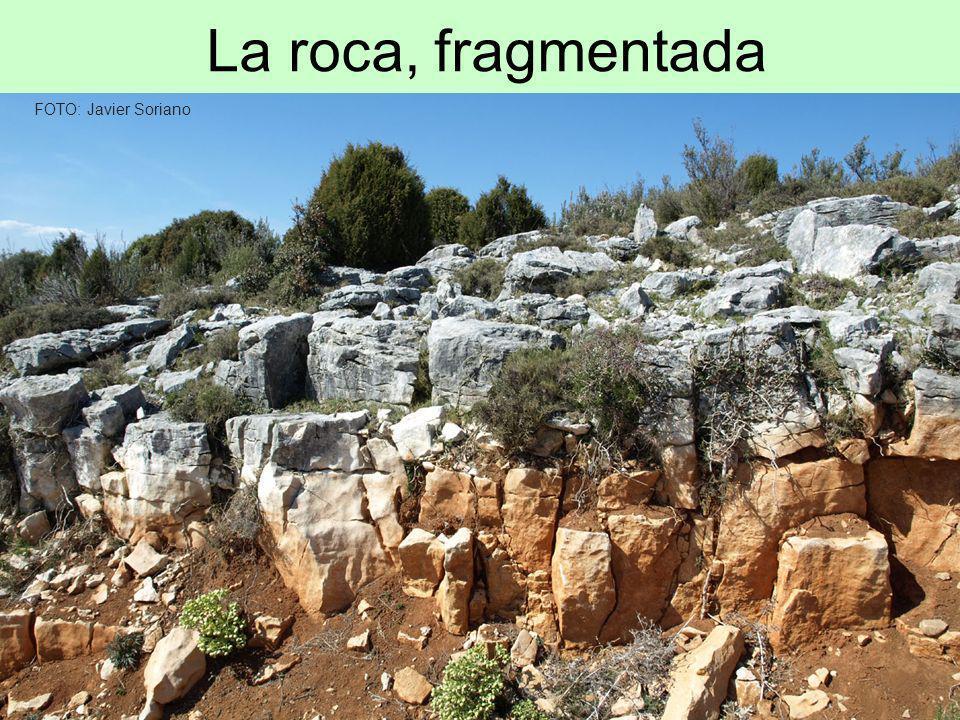 La roca, fragmentada FOTO: Javier Soriano