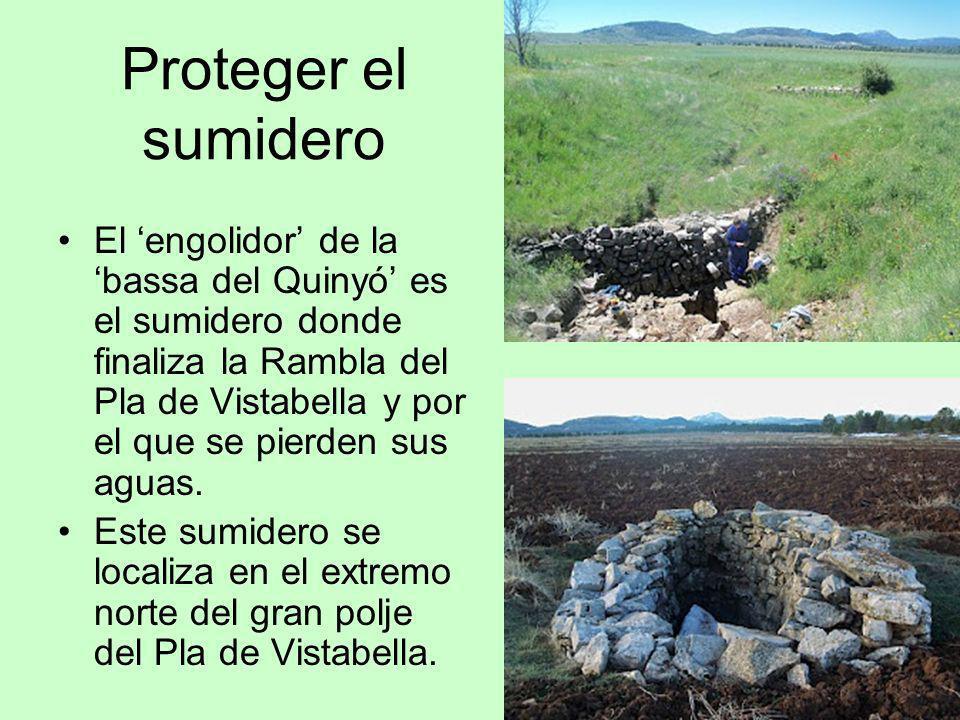 Proteger el sumidero El engolidor de la bassa del Quinyó es el sumidero donde finaliza la Rambla del Pla de Vistabella y por el que se pierden sus agu