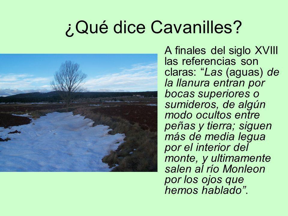 ¿Qué dice Cavanilles? A finales del siglo XVIII las referencias son claras: Las (aguas) de la llanura entran por bocas superiores o sumideros, de algú