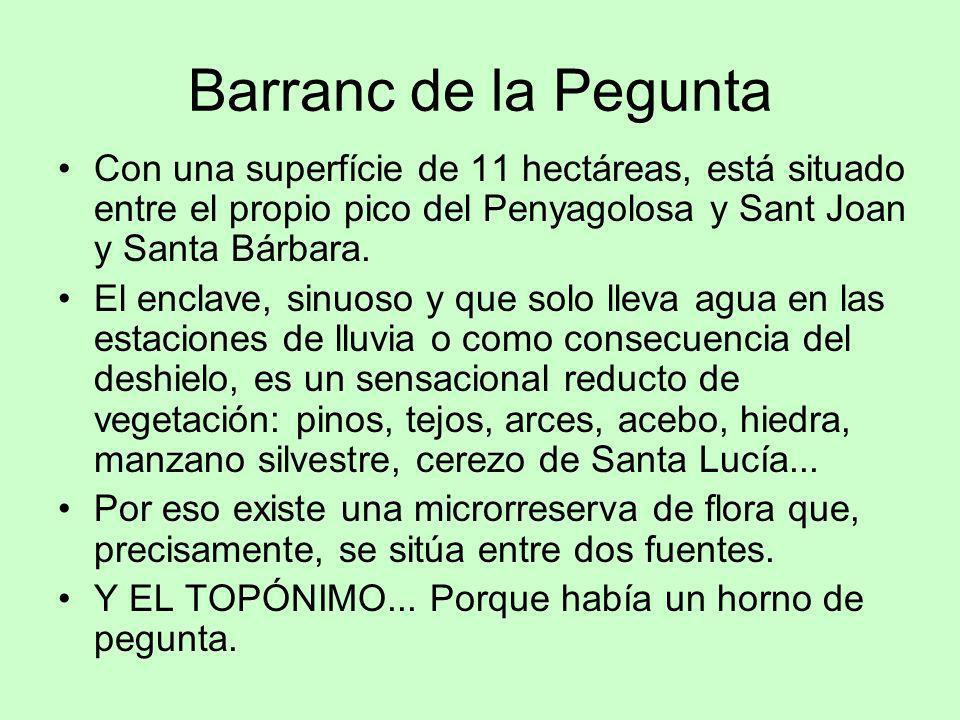 Barranc de la Pegunta Con una superfície de 11 hectáreas, está situado entre el propio pico del Penyagolosa y Sant Joan y Santa Bárbara. El enclave, s