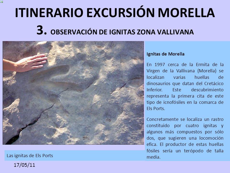 17/05/11 ITINERARIO EXCURSIÓN MORELLA 3. OBSERVACIÓN DE IGNITAS ZONA VALLIVANA Las ignitas de Els Ports Ignitas de Morella En 1997 cerca de la Ermita