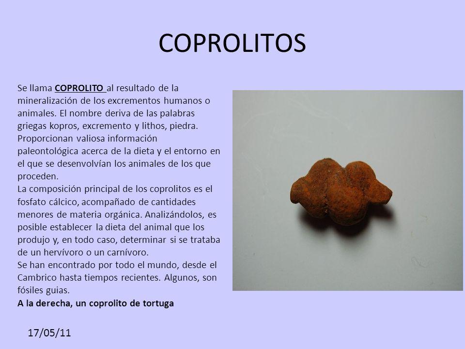 17/05/11 COPROLITOS Se llama COPROLITO al resultado de la mineralización de los excrementos humanos o animales. El nombre deriva de las palabras grieg