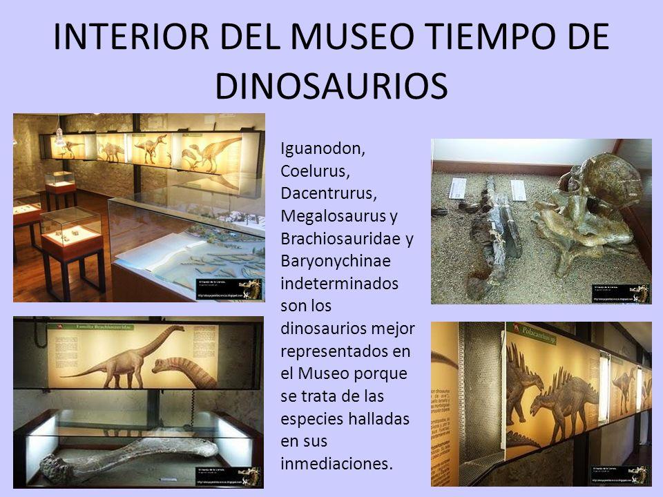 17/05/11 INTERIOR DEL MUSEO TIEMPO DE DINOSAURIOS Iguanodon, Coelurus, Dacentrurus, Megalosaurus y Brachiosauridae y Baryonychinae indeterminados son