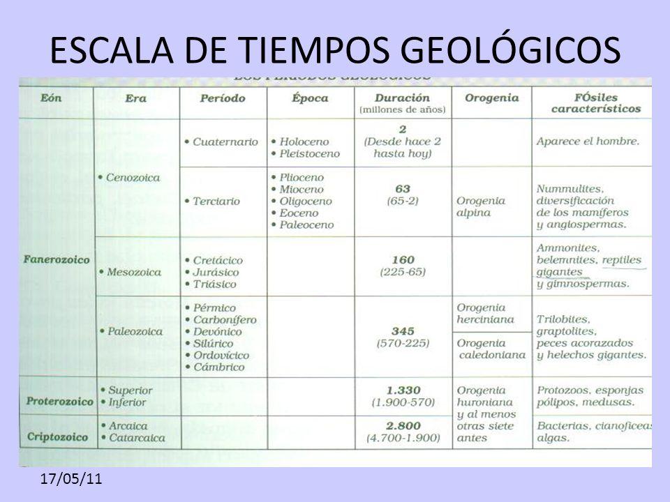ESCALA DE TIEMPOS GEOLÓGICOS