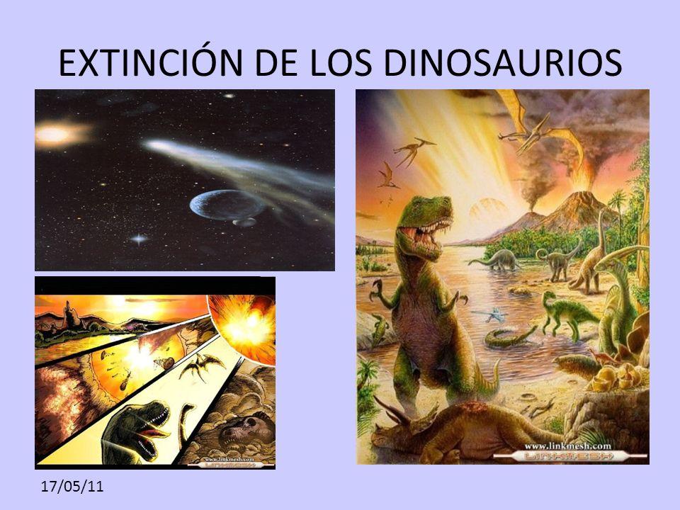 17/05/11 EXTINCIÓN DE LOS DINOSAURIOS