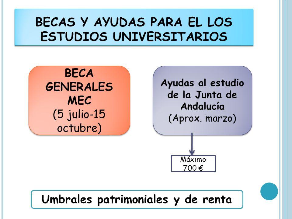 BECAS Y AYUDAS PARA EL LOS ESTUDIOS UNIVERSITARIOS BECA GENERALES MEC (5 julio-15 octubre) BECA GENERALES MEC (5 julio-15 octubre) Ayudas al estudio d