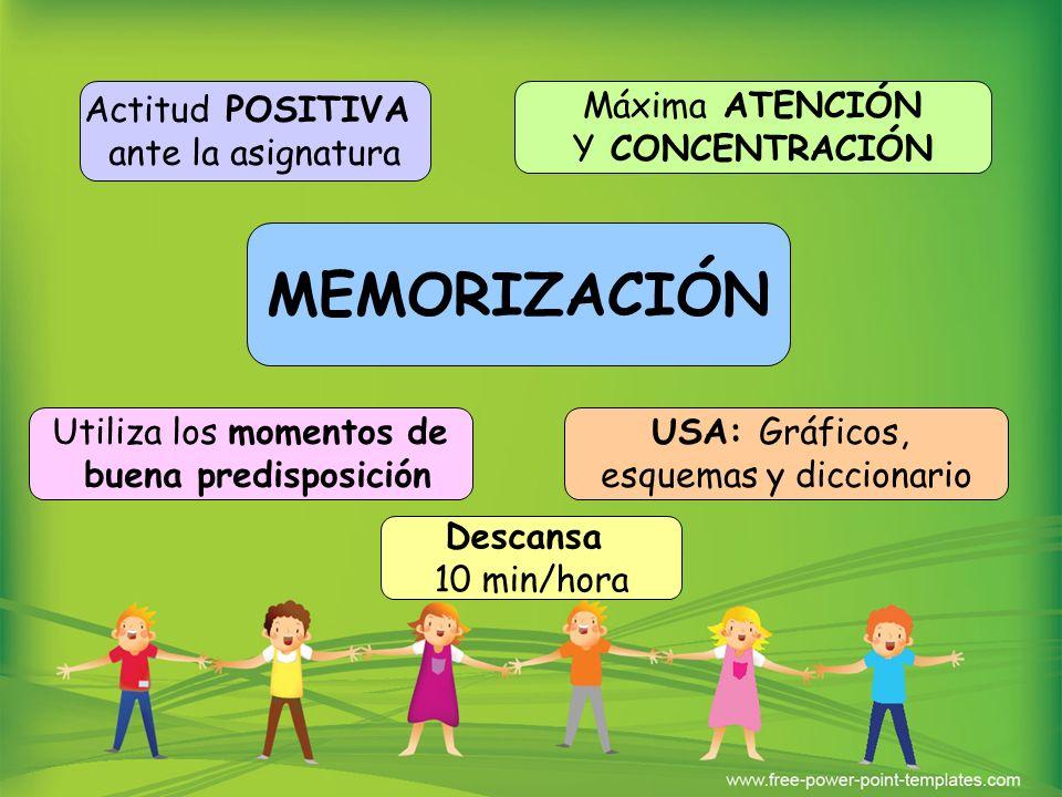 MEMORIZACIÓN Descansa 10 min/hora Utiliza los momentos de buena predisposición USA: Gráficos, esquemas y diccionario Actitud POSITIVA ante la asignatu