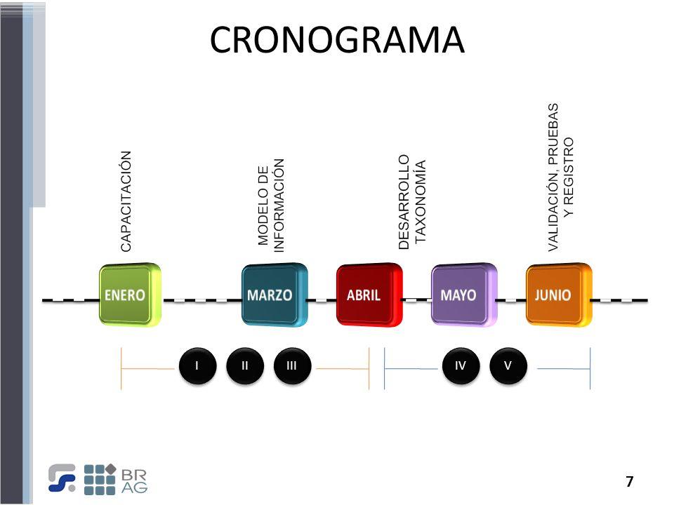 7 CRONOGRAMA III II I I IV V V