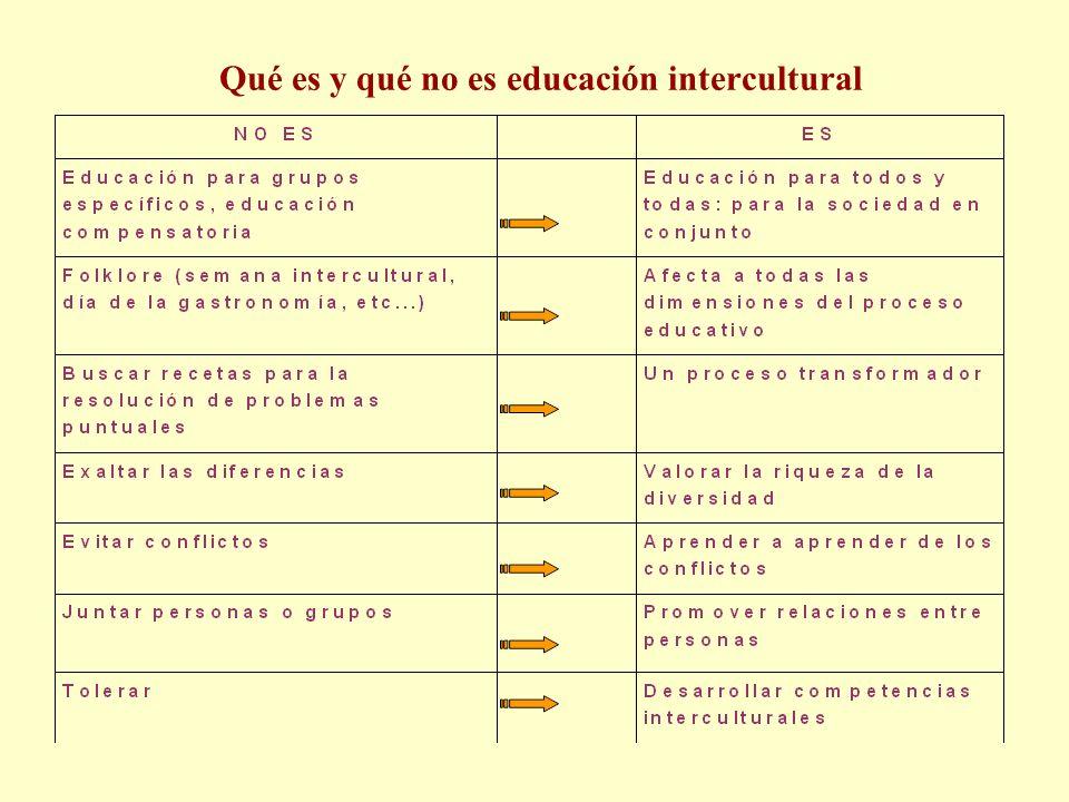Qué es y qué no es educación intercultural