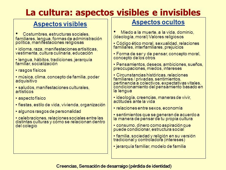 La cultura: aspectos visibles e invisibles Aspectos visibles Costumbres, estructuras sociales, familiares, lengua, formas de administración política,