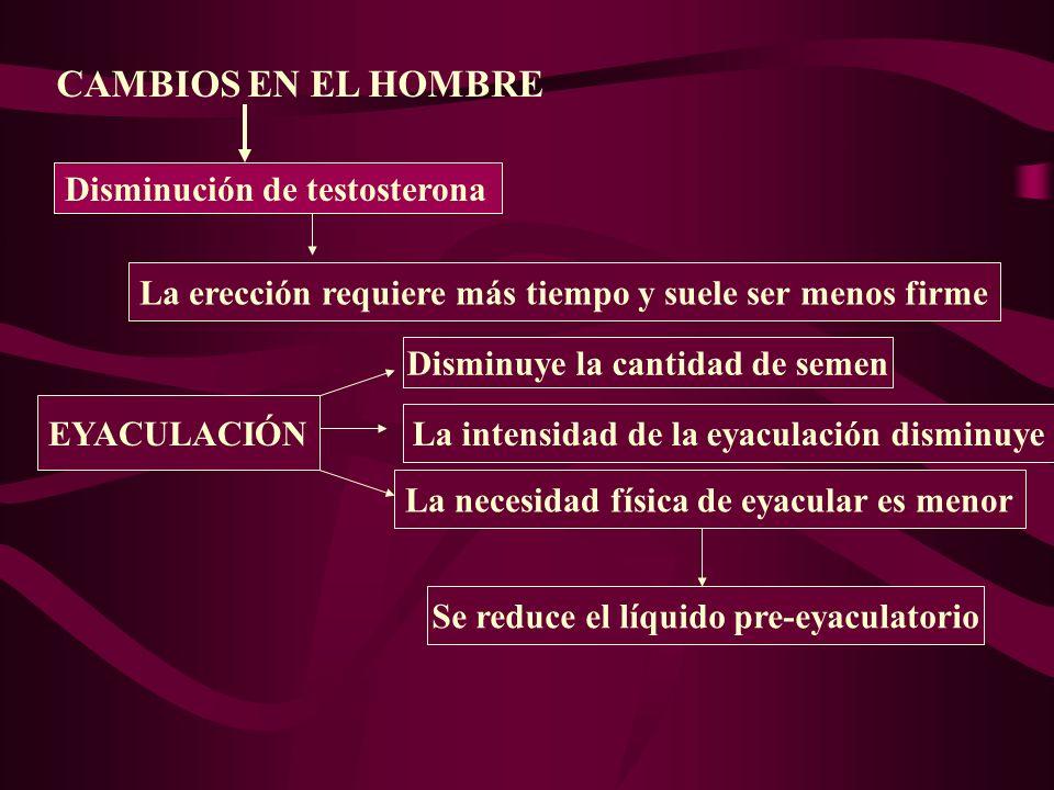 Existe una prevalencia de disfunciones sexuales debidas a causas médicas, psicológicas y/o como efecto secundario de la medicación administrada.