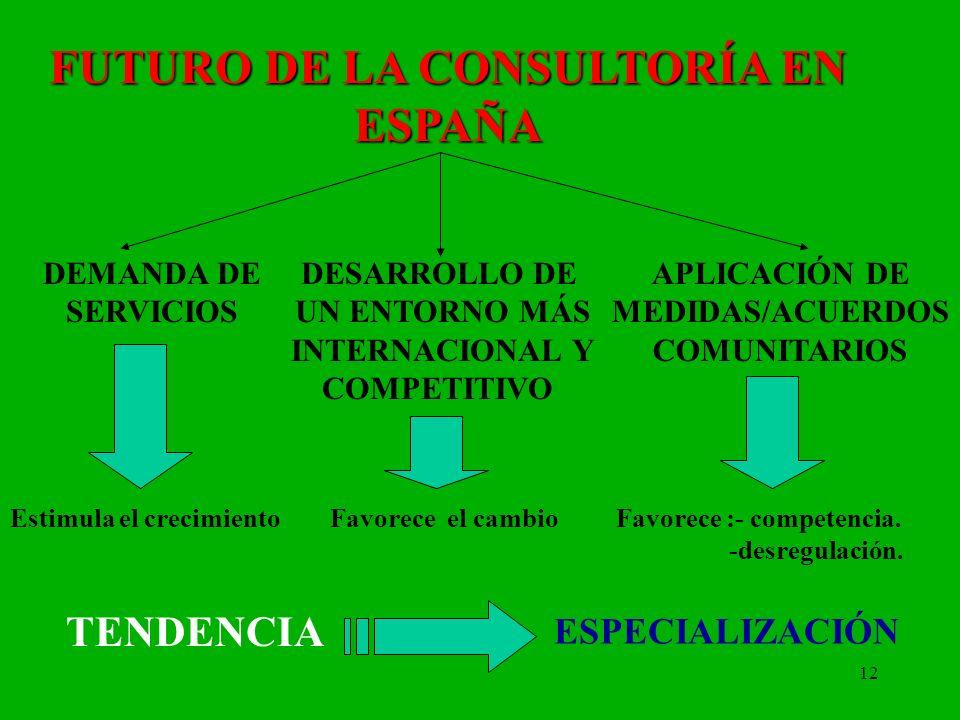 12 FUTURO DE LA CONSULTORÍA EN ESPAÑA DEMANDA DE SERVICIOS Estimula el crecimiento Favorece el cambio Favorece :- competencia. -desregulación. DESARRO