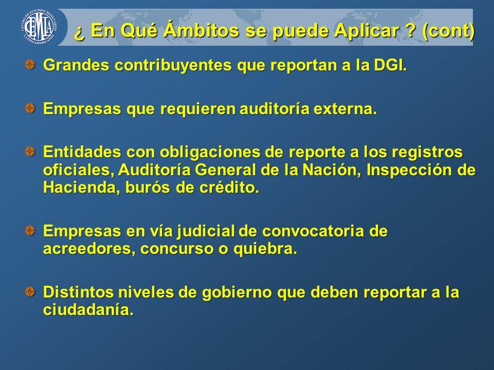 ¿ En Qué Ámbitos se puede Aplicar . (cont) Grandes contribuyentes que reportan a la DGI.