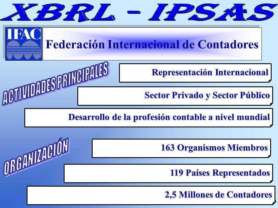 Cont. Carmen Giachino de Palladino Federación Internacional de Contadores Representación Internacional Sector Privado y Sector Público Desarrollo de l