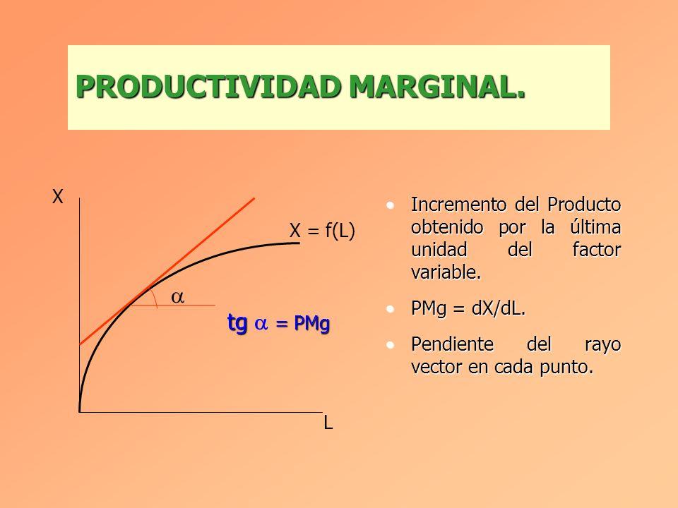 Producto por unidad de factor variable.Producto por unidad de factor variable. PMe = X/L.PMe = X/L. Pendiente del rayo vector que parte del origen.Pen