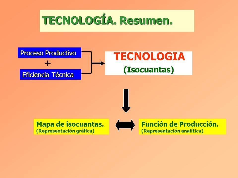 TECNOLOGÍA.Resumen. Proceso Productivo Eficiencia Técnica + Mapa de isocuantas.