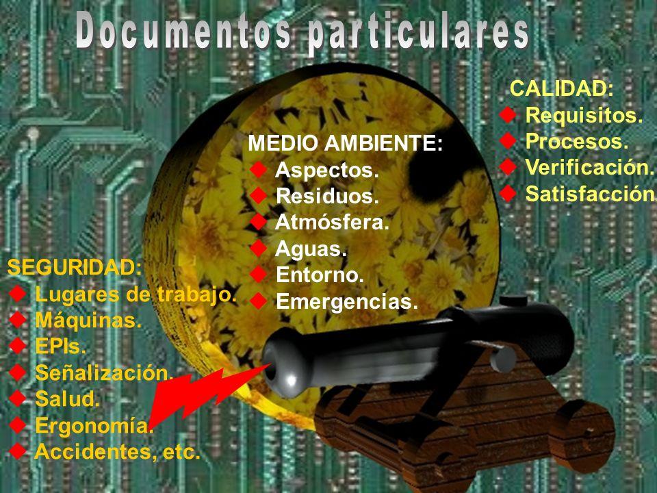 Legislación. Documentación. Indicadores, objetivos y programas. Comunicación. Formación, sensibilización y competencia. Calibración. Control de proces