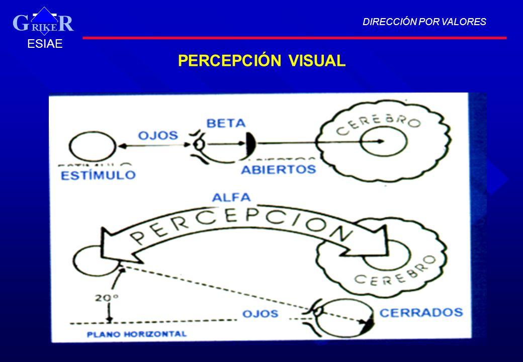 DIRECCIÓN POR VALORES RIKE R G ESIAE PERCEPCIÓN VISUAL