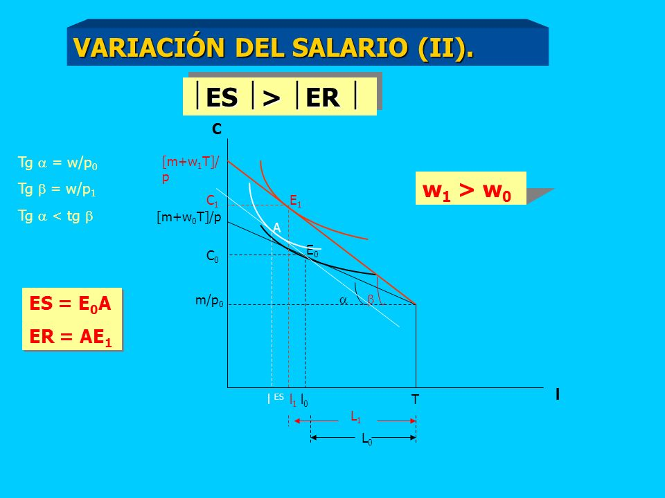 C [m+w 0 T]/p m/p 0 T l l0l0 C0C0 [m+w 1 T]/ p C1C1 l1l1 Tg = w/p 0 Tg = w/p 1 Tg < tg w 1 > w 0 L0L0 L1L1 E0E0 E1E1 A l ES ES > ER ES > ER ES = E 0 A ER = AE 1 ES = E 0 A ER = AE 1 VARIACIÓN DEL SALARIO (II).