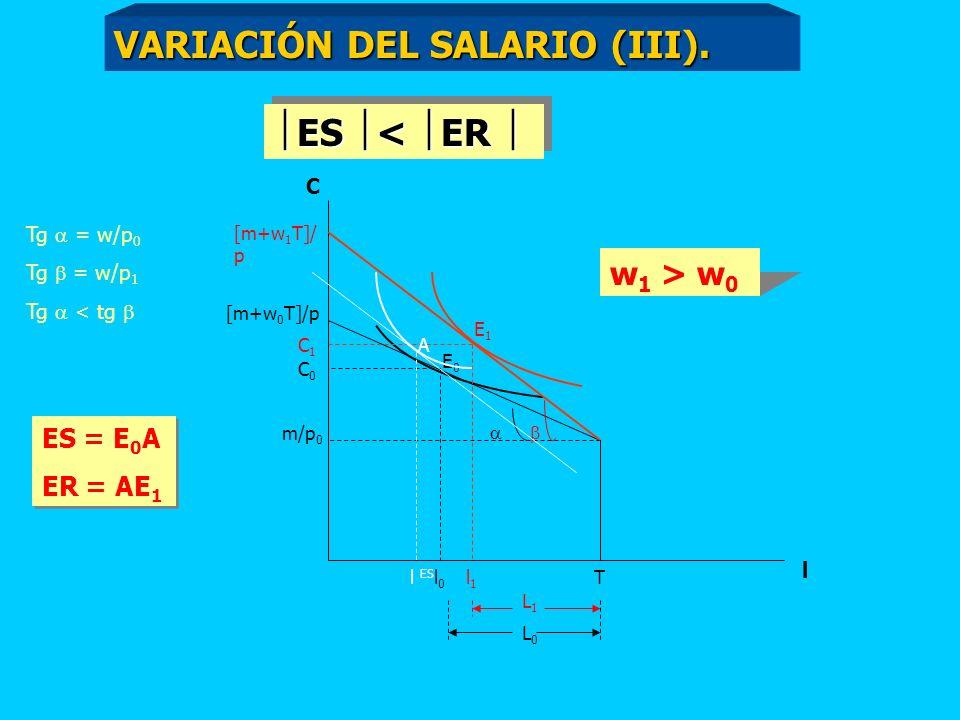 C [m+w 0 T]/p m/p 0 T l l0l0 C0C0 [m+w 1 T]/ p C1C1 l1l1 Tg = w/p 0 Tg = w/p 1 Tg < tg w 1 > w 0 L0L0 L1L1 E0E0 E1E1 A l ES ES < ER ES < ER ES = E 0 A ER = AE 1 ES = E 0 A ER = AE 1 VARIACIÓN DEL SALARIO (III).