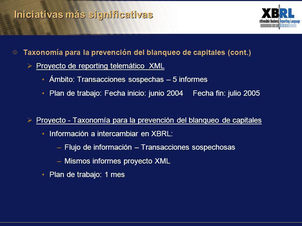 Taxonomía para la prevención del blanqueo de capitales (cont.) Proyecto de reporting telemático XML Ámbito: Transacciones sospechas – 5 informes Plan de trabajo: Fecha inicio: junio 2004 Fecha fin: julio 2005 Proyecto - Taxonomía para la prevención del blanqueo de capitales Información a intercambiar en XBRL: –Flujo de información – Transacciones sospechosas –Mismos informes proyecto XML Plan de trabajo: 1 mes Iniciativas más significativas