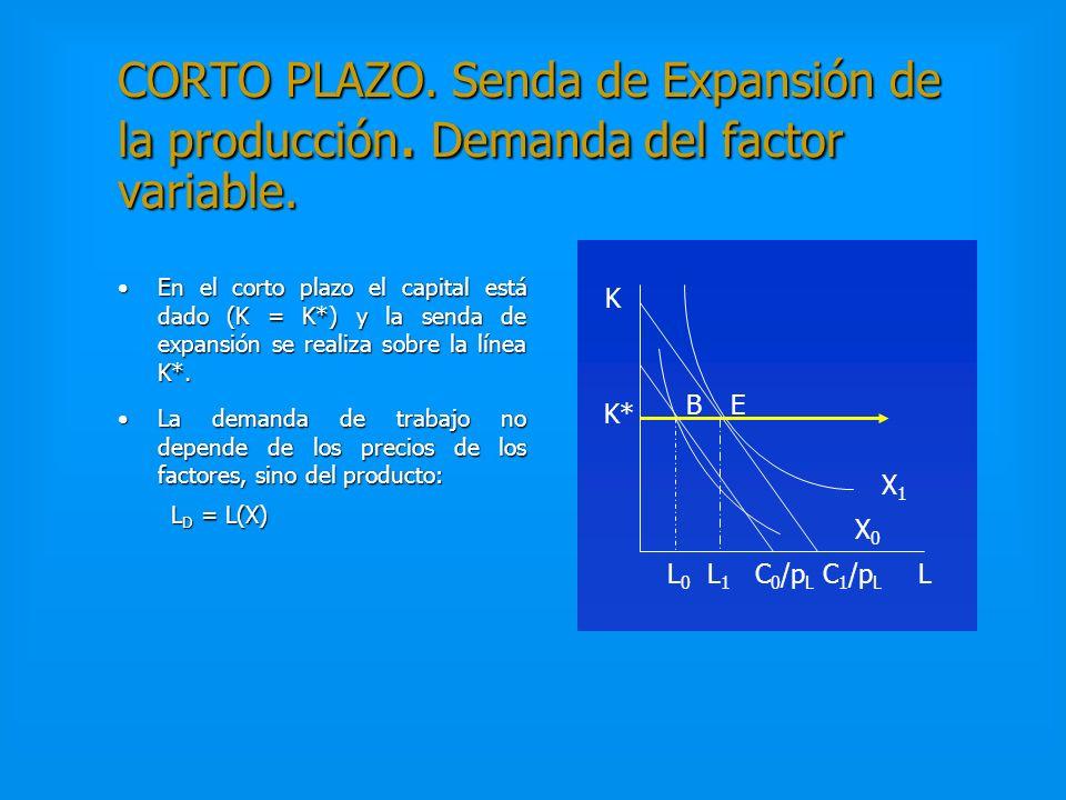 LARGO PLAZO. Ejemplo. Min. C = p L L + p K K s.a. X 0 = KL Condición de Tangencia:Condición de Tangencia: P L /p K = K/L Demandas condicionadas:Demand