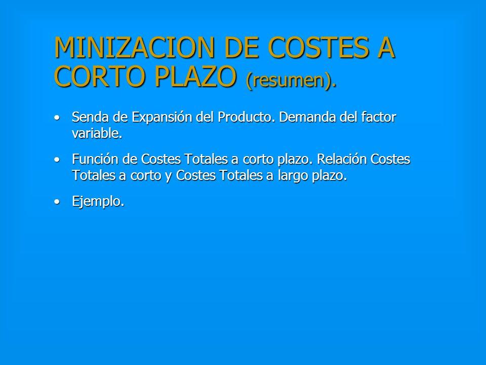 MINIMIZACION DE COSTES A LARGO PLAZO (resumen). Recta Isocoste.Recta Isocoste. Formalización y Condición de Tangencia.Formalización y Condición de Tan