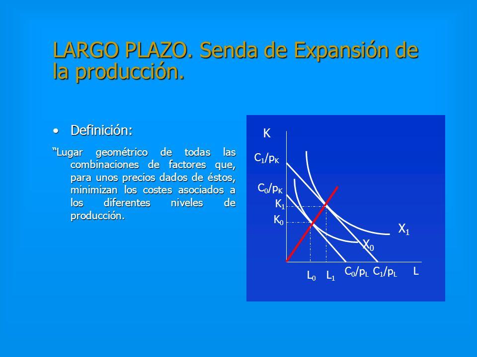LARGO PLAZO. Demanda condicionada de los factores y Función de costes Las funciones de demanda de los factores dependen de los precios de éstos, y est