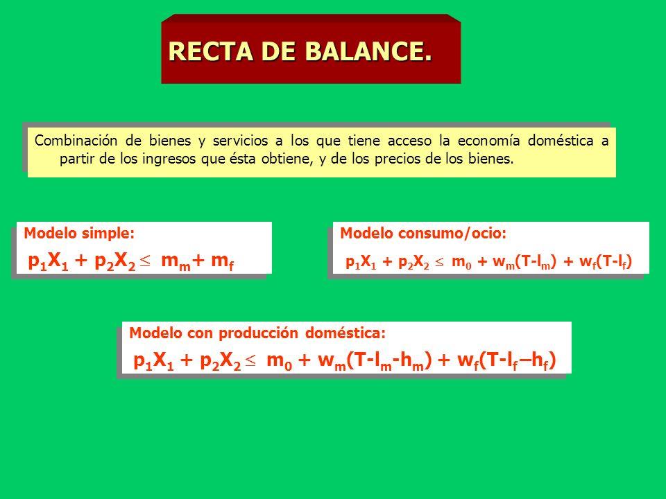 LECCION 12. LAS ECONOMÍAS DOMÉSTICAS. José L. Calvo
