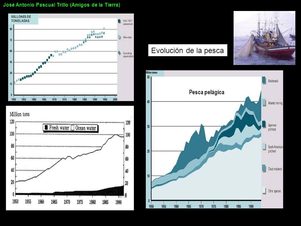MILLONES DE TONELADAS Pesca pelágica Evolución de la pesca José Antonio Pascual Trillo (Amigos de la Tierra)