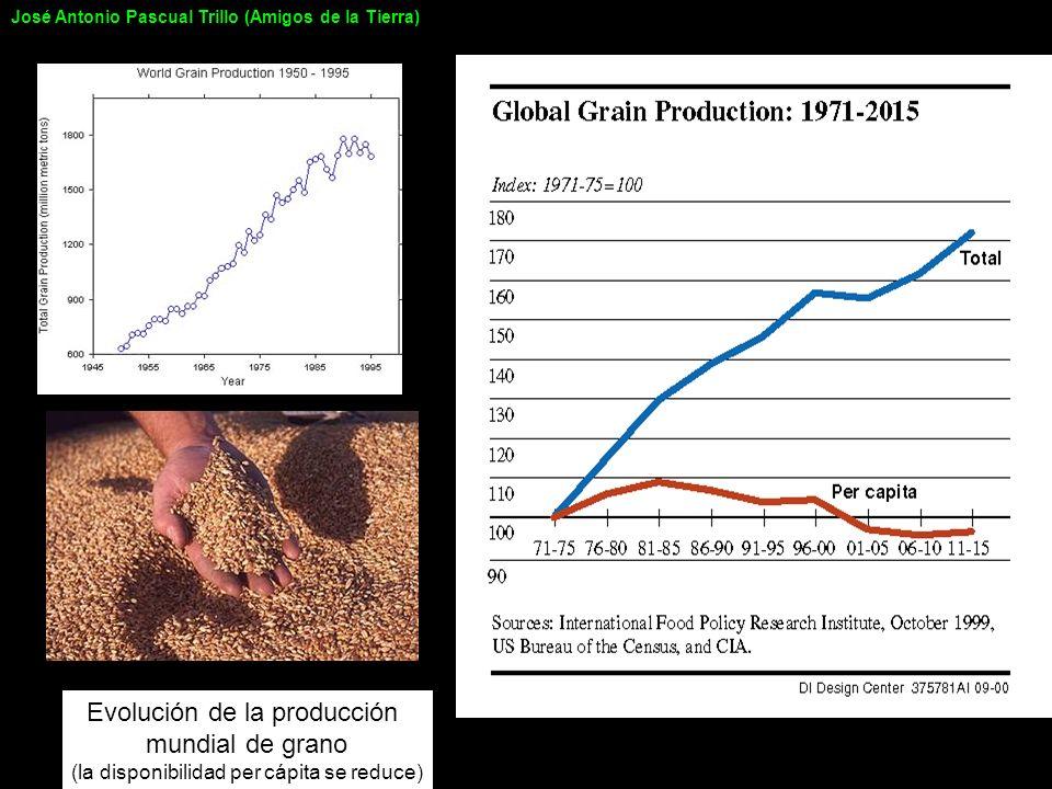 Producción y consumo mundial de Cobre José Antonio Pascual Trillo (Amigos de la Tierra)