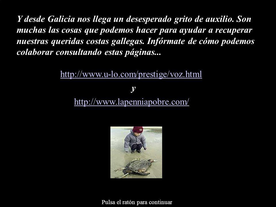 Y desde Galicia nos llega un desesperado grito de auxilio. Son muchas las cosas que podemos hacer para ayudar a recuperar nuestras queridas costas gal