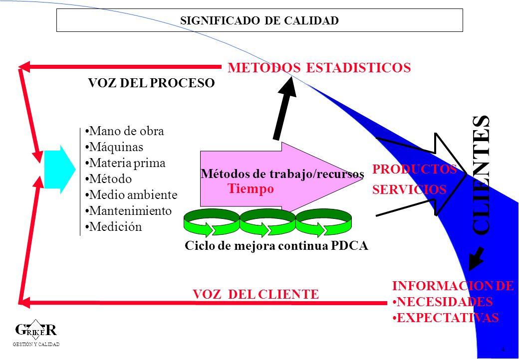 14 SIGNIFICADO DE CALIDAD 4 Tiempo Métodos de trabajo/recursos Ciclo de mejora continua PDCA CLIENTES PRODUCTOS SERVICIOS INFORMACION DE NECESIDADES E