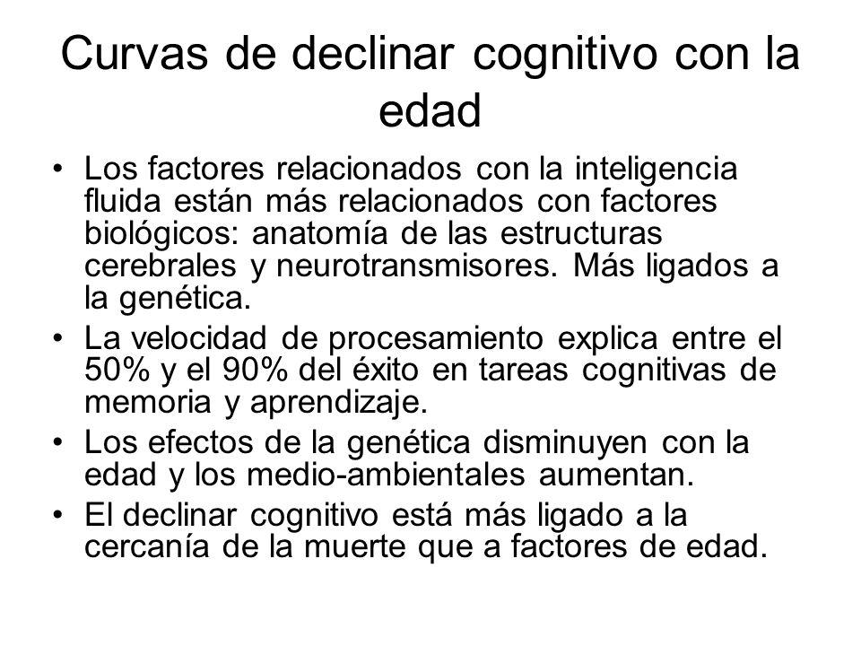 Curvas de declinar cognitivo con la edad Los factores relacionados con la inteligencia fluida están más relacionados con factores biológicos: anatomía