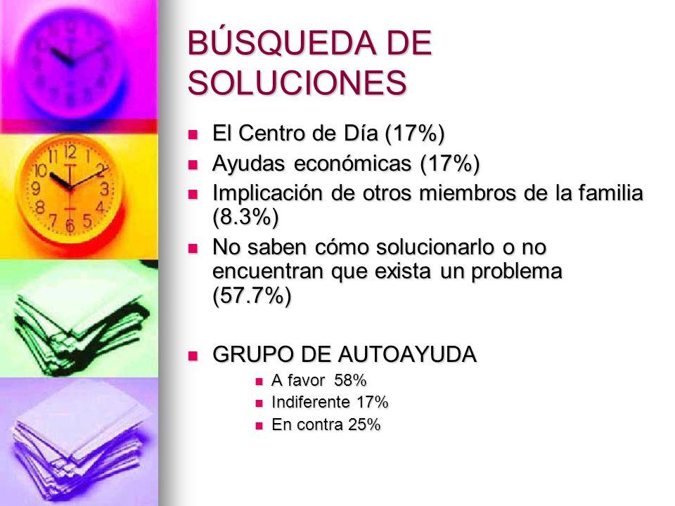BÚSQUEDA DE SOLUCIONES El Centro de Día (17%) El Centro de Día (17%) Ayudas económicas (17%) Ayudas económicas (17%) Implicación de otros miembros de