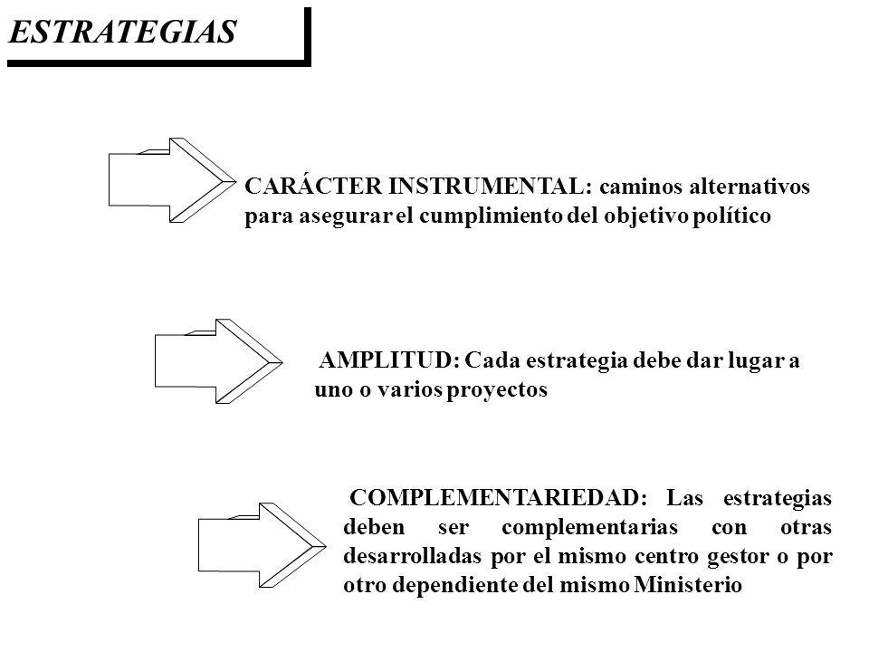 ESTRATEGIAS CARÁCTER INSTRUMENTAL: caminos alternativos para asegurar el cumplimiento del objetivo político AMPLITUD: Cada estrategia debe dar lugar a