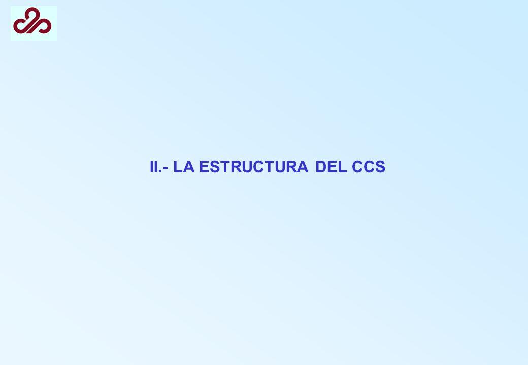 II.- LA ESTRUCTURA DEL CCS