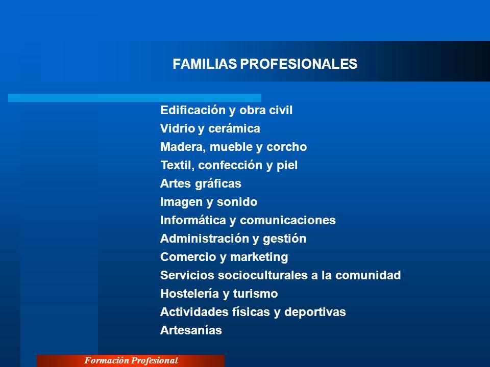 Formación Profesional FAMILIAS PROFESIONALES Edificación y obra civil Vidrio y cerámica Madera, mueble y corcho Textil, confección y piel Artes gráfic