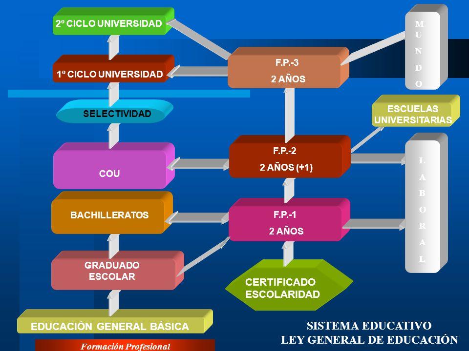 Formación Profesional EL SISTEMA DE FORMACIÓN PROFESIONAL EN ESPAÑA El II Programa Nacional de la Formación Profesional gira en torno a seis objetivos básicos: Creación del Sistema Nac.