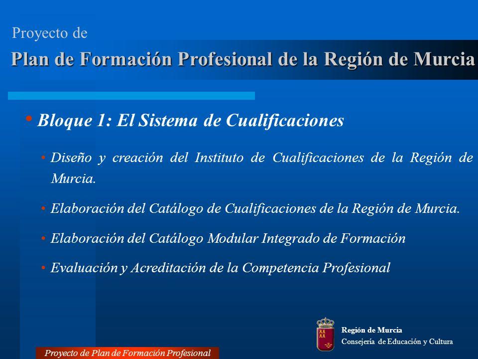 Bloque 1: El Sistema de Cualificaciones Diseño y creación del Instituto de Cualificaciones de la Región de Murcia.