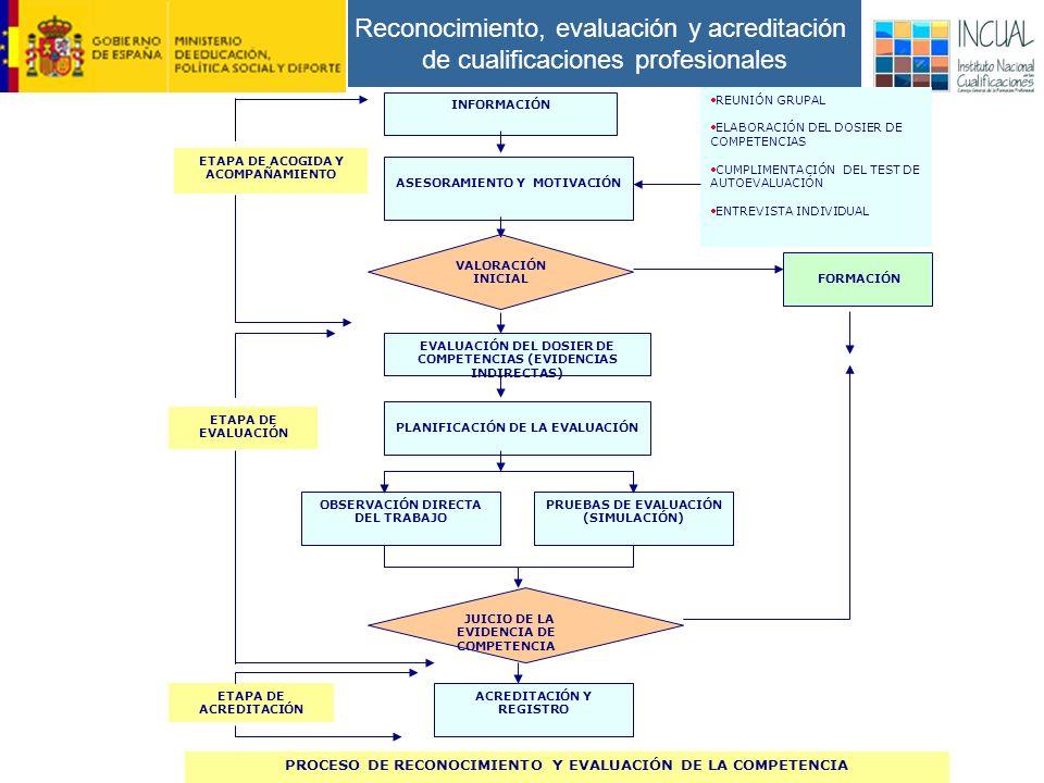 Reconocimiento, evaluación y acreditación de cualificaciones profesionales INFORMACIÓN ASESORAMIENTO Y MOTIVACIÓN ETAPA DE ACOGIDA Y ACOMPAÑAMIENTO VALORACIÓN INICIAL EVALUACIÓN DEL DOSIER DE COMPETENCIAS (EVIDENCIAS INDIRECTAS) REUNIÓN GRUPAL ELABORACIÓN DEL DOSIER DE COMPETENCIAS CUMPLIMENTACIÓN DEL TEST DE AUTOEVALUACIÓN ENTREVISTA INDIVIDUAL FORMACIÓN PLANIFICACIÓN DE LA EVALUACIÓN OBSERVACIÓN DIRECTA DEL TRABAJO PRUEBAS DE EVALUACIÓN (SIMULACIÓN) ETAPA DE EVALUACIÓN JUICIO DE LA EVIDENCIA DE COMPETENCIA ACREDITACIÓN Y REGISTRO ETAPA DE ACREDITACIÓN PROCESO DE RECONOCIMIENTO Y EVALUACIÓN DE LA COMPETENCIA