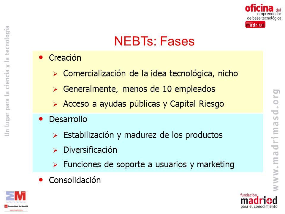 NEBTs: Fases Creación Comercialización de la idea tecnológica, nicho Generalmente, menos de 10 empleados Acceso a ayudas públicas y Capital Riesgo Desarrollo Estabilización y madurez de los productos Diversificación Funciones de soporte a usuarios y marketing Consolidación