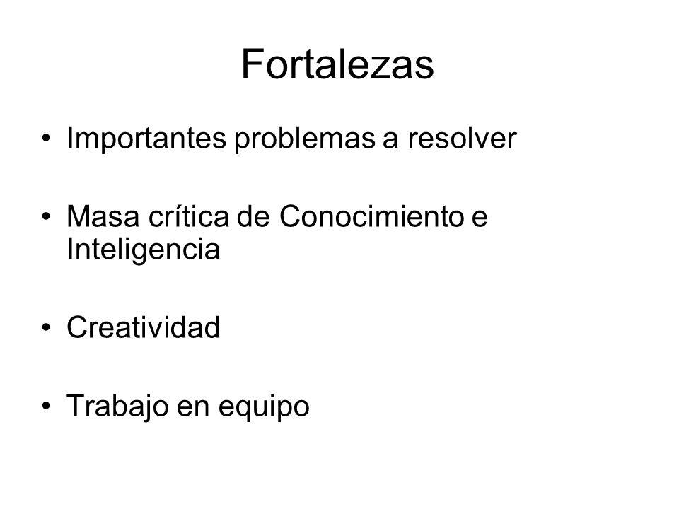 Fortalezas Importantes problemas a resolver Masa crítica de Conocimiento e Inteligencia Creatividad Trabajo en equipo