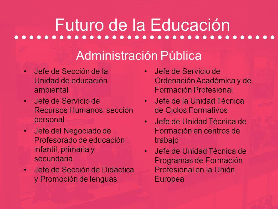 Futuro de la Educación Área de la Comunicación y Multimedia Productoras Cadenas de radio-TV Editoriales y medios audiovisuales Consultoras de formació