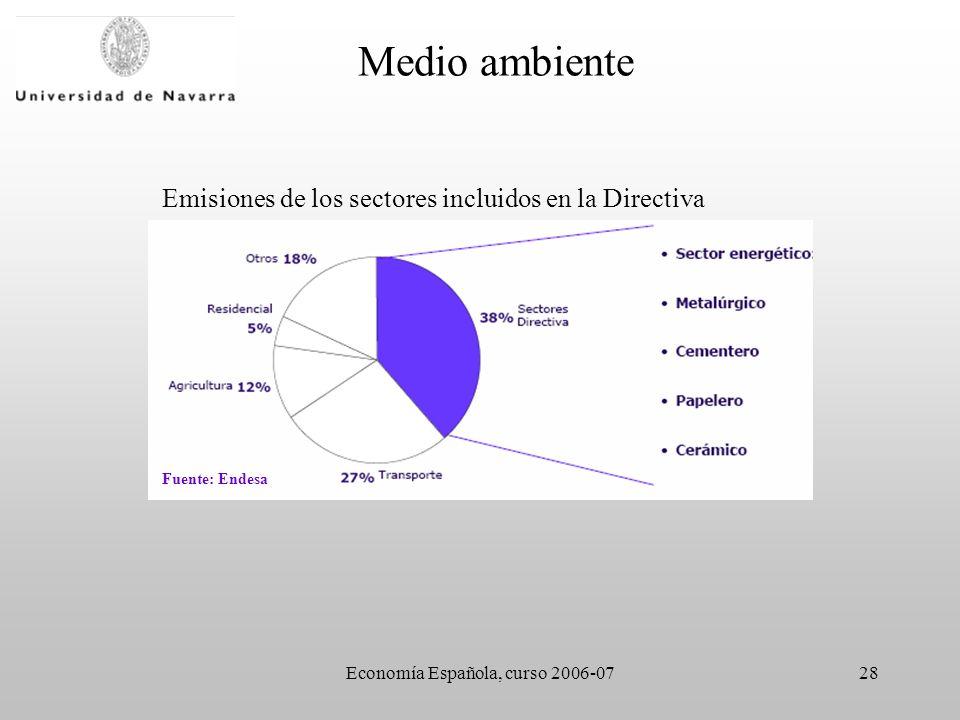 Economía Española, curso 2006-0728 Medio ambiente Fuente: Endesa Emisiones de los sectores incluidos en la Directiva
