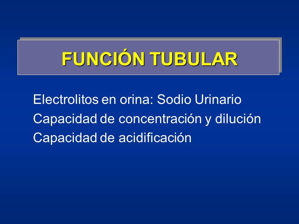 FUNCIÓN TUBULAR Electrolitos en orina: Sodio Urinario Capacidad de concentración y dilución Capacidad de acidificación